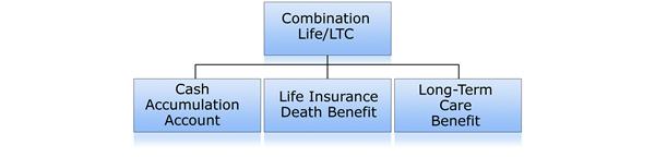 insurance riders chart